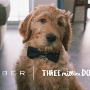 Las estrategias de Uber