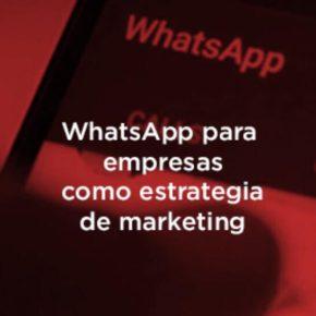 WhatsApp para empresas: ¿Cómo utilizarlo?